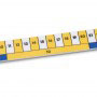 Early Learning Rulers